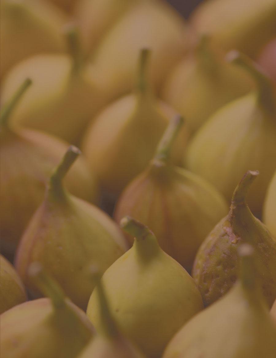Ten Fascinating Fig Facts | Edible Ozarkansas