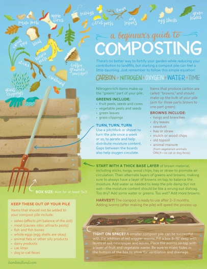 graphic of tips for beginning composting