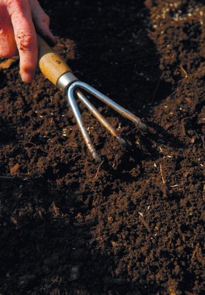 breaking up soil with gardening rake