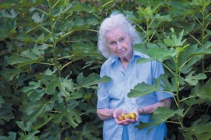 Dorothy in the fig garden in Ozarkansas