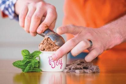 homemade pure joy mint chocolate ice cream