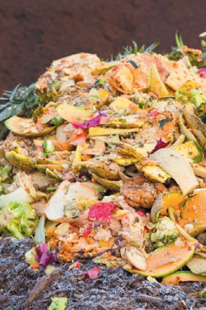 food waste in compost mixture