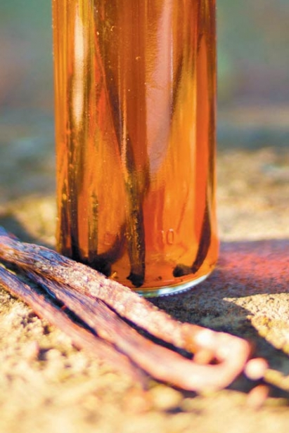 Bourbon Vanilla Extract
